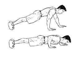 Fit ohne Geräte - Brust - Push Ups Variations