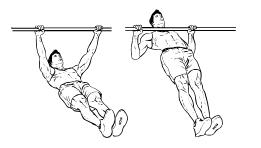Fit ohne Geräte - Rücken - Bodyweight Rows
