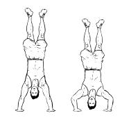 Fit ohne Geräte - Schultern - Handstand Push Ups