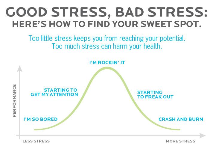 Guter Stress, Schlechter Stress