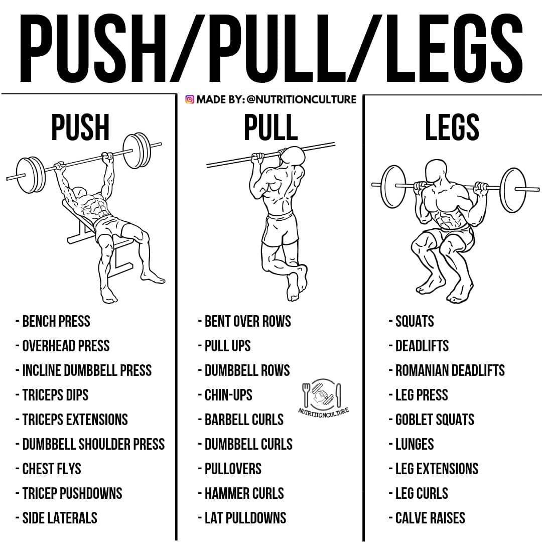 Push Pull Legs Trainingsplan